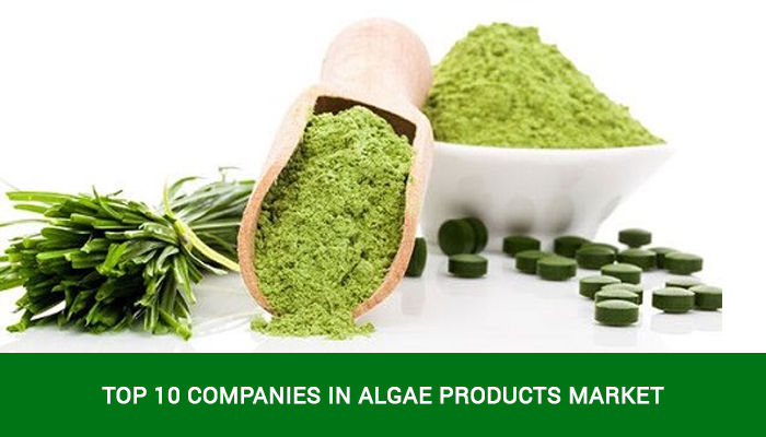 algae products market companies