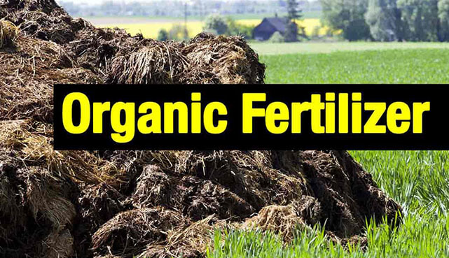 Top 10 Companies in Organic Fertilizers Market | Meticulous Blog