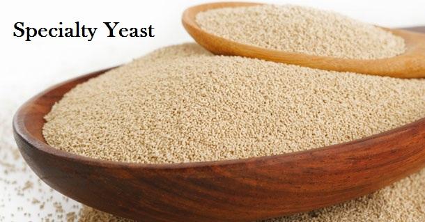 Top 10 Companies in Specialty Yeast Market | Meticulous Blog