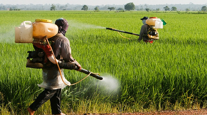 Crop Protection Chemicals Market